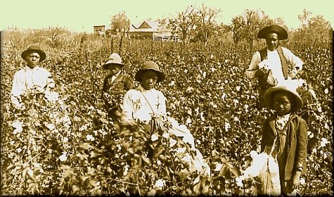 an essay on the views of slavery by a south plantation owner