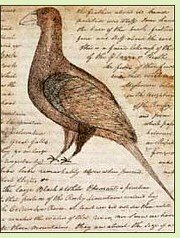 page of Clark journal